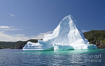Art Print featuring the photograph Iceberg Newfoundland Canada by Liz Leyden