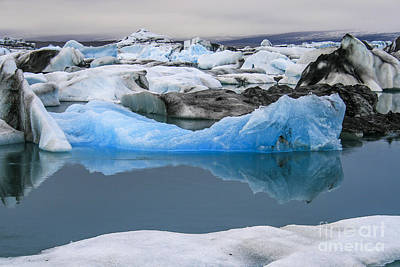 Photograph - Iceberg by Patricia Hofmeester