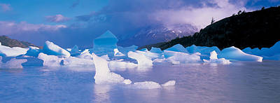 People On Ice Photograph - Icebergs Floating On Water, Lago Grey by Panoramic Images
