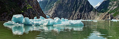 People On Ice Photograph - Icebergs Floating On Water Of Tracy Arm by Panoramic Images
