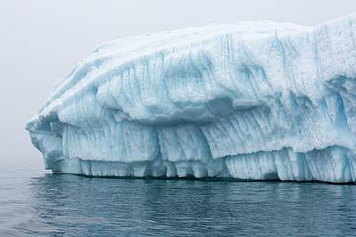 Graham Photograph - Icebergs In Wilhelmina Bay by Ashley Cooper