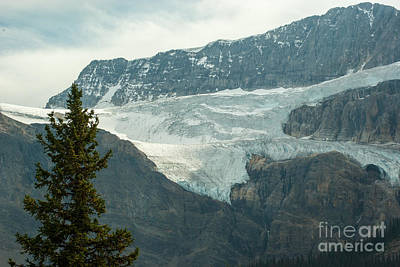 Icefields Parkway 1.6009 Art Print by Stephen Parker