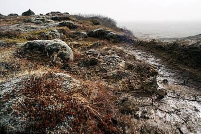 Iceland Barren Landscape Art Print by Francesco Emanuele Carucci