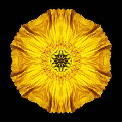 Iceland Poppy Flower Mandala Art Print