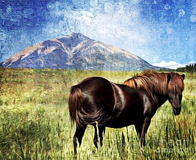 Forelock Painting - Icelandic Horse by Barbara Chichester