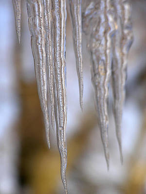 Photograph - Icicle Art by Haiti Missions