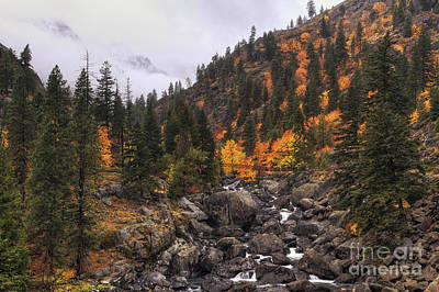 Photograph - Icicle Creek Radiance by Mark Kiver