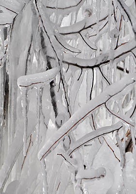 Photograph - Icicles 2 by Staci Bigelow