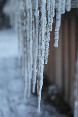 Photograph - Icicles by Angi Parks