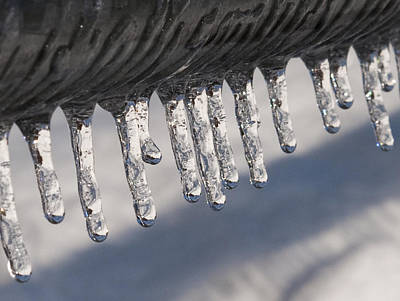 New England Photograph - Icicles by Donna Doherty