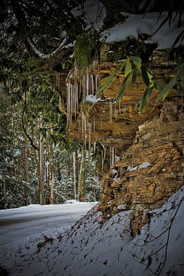 Icicles In Wv Art Print