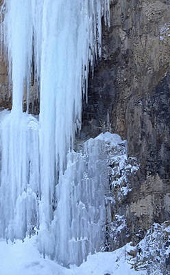 Photograph - Icicles by Kume Bryant