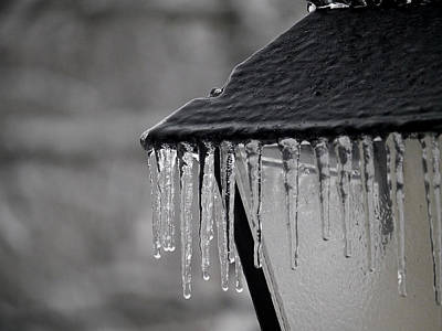 Photograph - Icicles - Lamp Post 2 by Richard Reeve