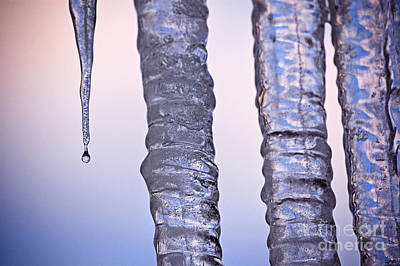 Photograph - Icicles by Tom Brickhouse