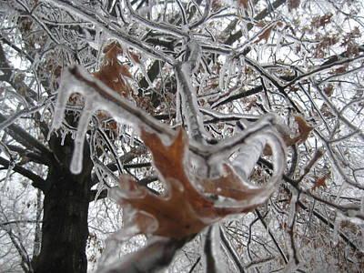 Icy Beckoning Art Print