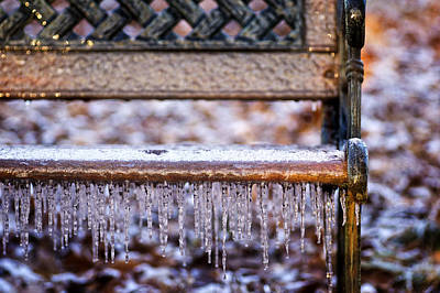 Photograph - Icy Bench by Wayne Meyer