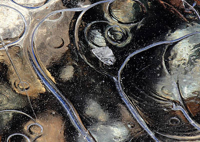 Photograph - Icy Bubbles by Randy Hall