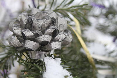 Photograph - Icy Christmas Tree by Kristy Jeppson
