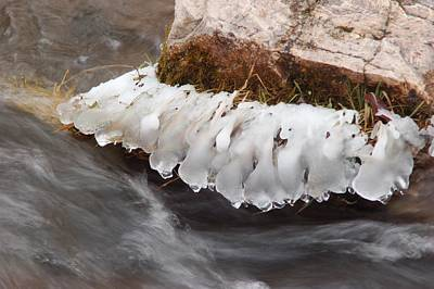 Photograph - Icy Drips In Spearfish Creek by Dakota Light Photography By Dakota
