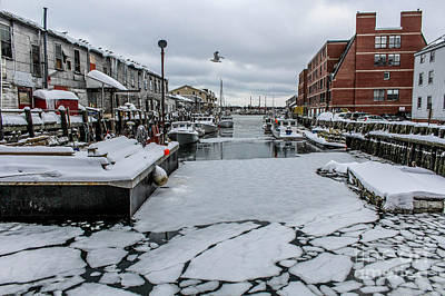 Surfing Maine Photograph - Icy Harbor Day by Joe Faragalli