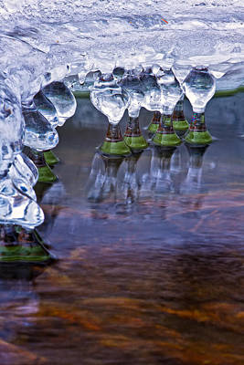 Photograph - Icy Jewels by Jeff Sinon
