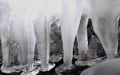 Photograph - Icy Molars by Janice Drew