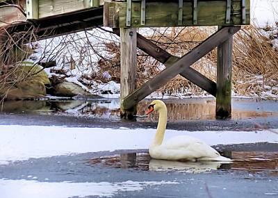 Icy Pond Print by Janice Drew