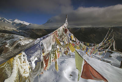 Photograph - Icy Prayer Flags Himalaya India by Colin Monteath