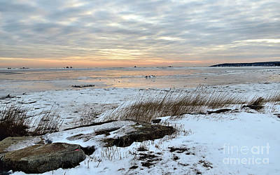 Photograph - Icy Seascape by Janice Drew
