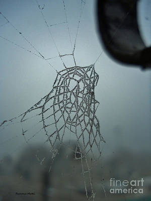 Art Print featuring the photograph Icy Spiderweb by Ramona Matei