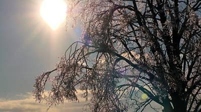 Photograph - Icy Sunburst by Douglas Pike