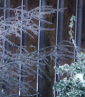 Photograph - Icy Verticles by Ian  MacDonald