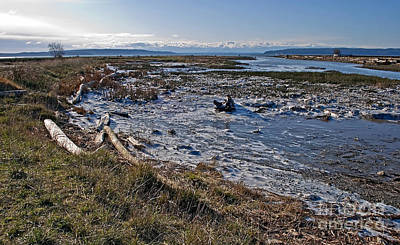 Photograph - Icy Winter Tidal Flat Landscape by Valerie Garner