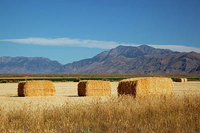 Bale Photograph - Idaho, Butte County, Hay Bales by Jamie and Judy Wild