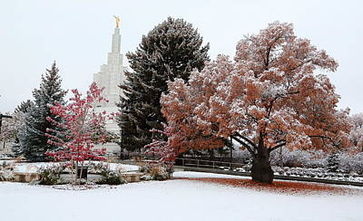 Photograph - Idaho Falls Temple Winter by David Andersen