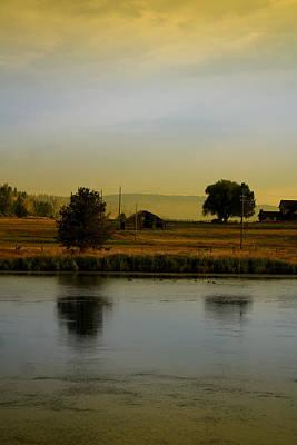 Photograph - Idaho Tree Reflections  by Mary Gaines