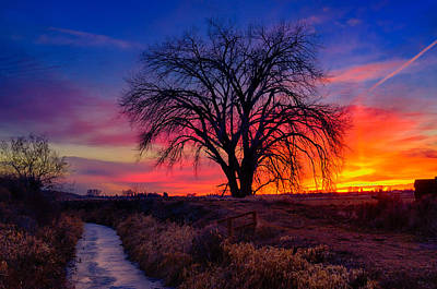 Idaho Winter Sunset Art Print by Greg Norrell