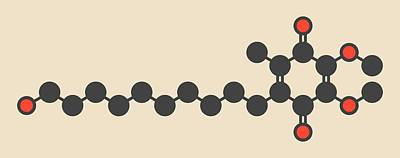 Coenzyme Photograph - Idebenone Drug Molecule by Molekuul