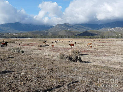 Idlewild Herd 2 Art Print by Deborah Smolinske
