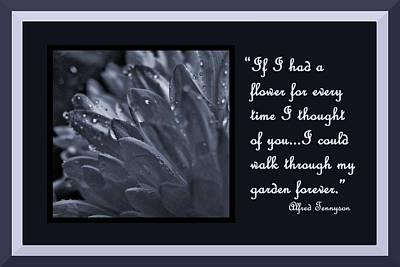 Photograph - If I Had A Flower by Barbara St Jean