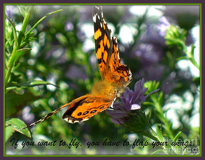 Art Print featuring the photograph If You Want To Fly by Heidi Manly