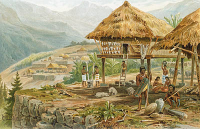 Native Drawing - Igorrote Farm In Luzon, Philippines, From The History Of Mankind, Vol.1, By Prof. Friedrich Ratzel by Hans Meyer