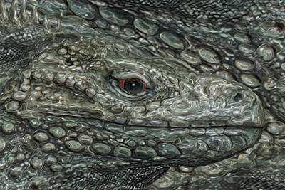 Graze Digital Art - Iguana by Jack Zulli