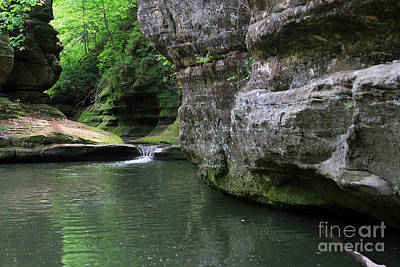 Illinois Canyon May 2014 Art Print