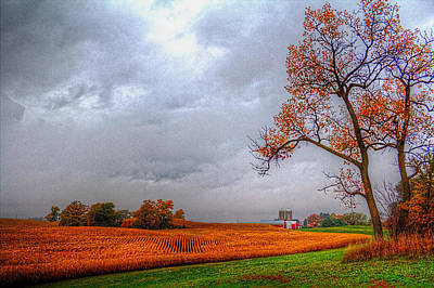 Photograph - Illinois Farmland II by Roger Passman