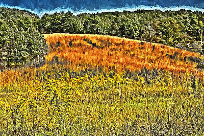 Photograph - Illinois Grassland Woodstock Illinois by Roger Passman