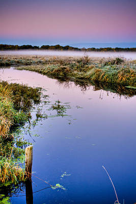 Photograph - Black Tern Marsh At Dawn No. 1 by Roger Passman