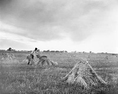 Photograph - Illinois Wheat Harvest by Granger