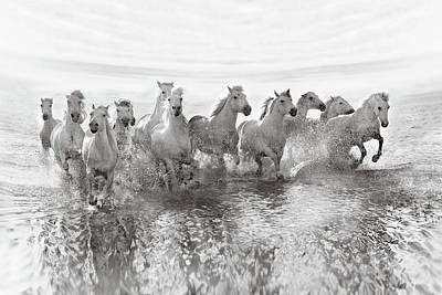 Crashing Photograph - Illusion Of Power (13 Horse Power Though) by Roman Golubenko