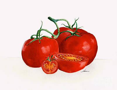 Painting - Illustration Of Red Ripe Tomatoes And Vine by Nan Wright